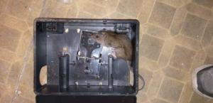 patkányirtás csapdával